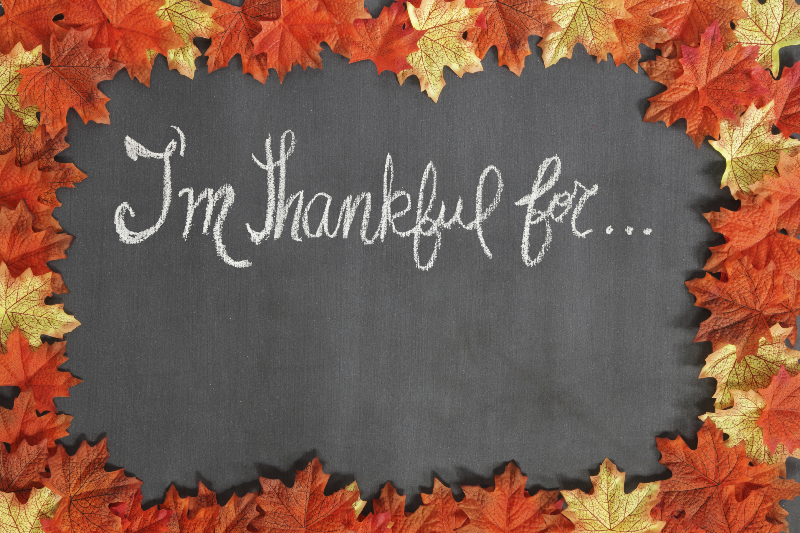 Adopt an Attitude of Gratitude – My Challenge to You