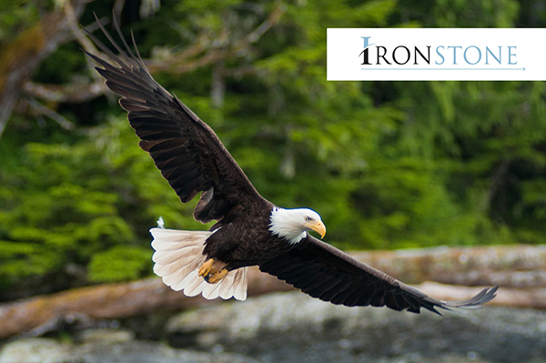 Happy 4th of July from Ironstone!
